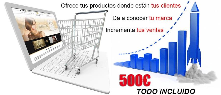 Empresa para crear tu tienda online al mejor precio en Murcia